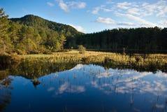 Reflexões no Loch fotografia de stock royalty free