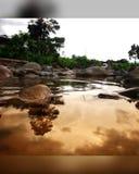Reflexões pequenas bonitas da lagoa imagem de stock