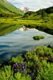 Reflexões tampadas neve e reflexões do lago. Imagem de Stock Royalty Free