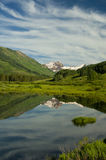 Reflexões tampadas neve e reflexões do lago. Fotos de Stock