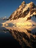 Reflexión antártica Fotos de archivo libres de regalías