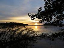 Reflexión caida del árbol en agua durante puesta del sol sobre el lago hermoso con el cielo nublado en fondo Fotografía de archivo libre de regalías