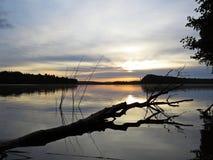 Reflexión caida del árbol en agua durante puesta del sol sobre el lago hermoso con el cielo nublado en fondo Fotografía de archivo