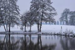 Reflexión congelada del lago en campo francés durante la estación/el invierno de la Navidad imagen de archivo libre de regalías