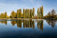 Reflexión de árboles Imagenes de archivo