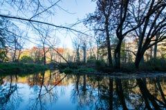 Reflexión de árboles coloridos en el agua en el coto de BeeTree adentro Imagen de archivo