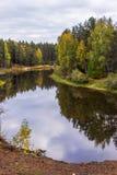 Reflexión de árboles en el agua del río Mologa Imagenes de archivo