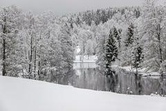 Reflexión de árboles en el lago con nieve Imagen de archivo