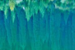 Reflexión de árboles en un fondo verde del lago Foto de archivo libre de regalías