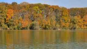 Reflexión de Autumn Color Trees And Clouds en el lago almacen de video