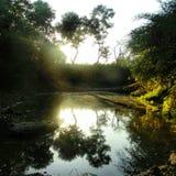 Reflexión de espejo del agua Imagen de archivo libre de regalías