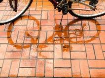 Reflexión de la bicicleta Foto de archivo