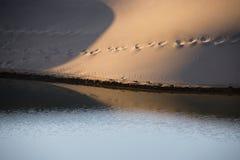 Reflexión de la duna de arena en el agua perturbada por la brisa ligera Imagen de archivo