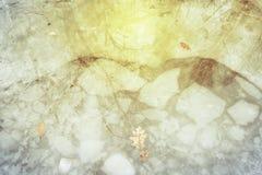Reflexión de la luz del sol en el charco Fotografía de archivo