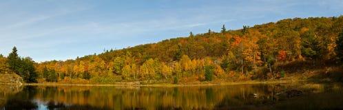 Reflexión de la mañana en el lago fotos de archivo libres de regalías
