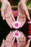 Reflexión de la mano de la flor Foto de archivo