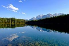 Reflexión de la montaña del templo en Herbert Lake Fotos de archivo