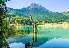 Reflexión de la montaña y de árboles en el lago Doxa Foto de archivo libre de regalías