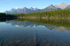 Reflexión de la montaña y del bosque en el lago cristalino mirror Fotografía de archivo
