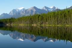 Reflexión de la montaña y del bosque en el lago mirror Foto de archivo