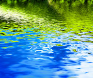 Reflexión de la naturaleza verde en ondas de agua potable Fotografía de archivo