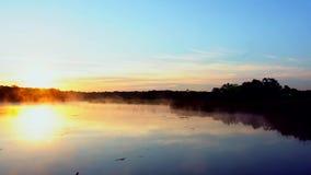 Reflexión de la niebla y del bosque y del lago de árboles en agua metrajes