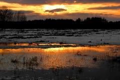 Reflexión de la puesta del sol Foto de archivo libre de regalías