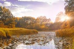 Reflexión de la simetría en el río del otoño Salida del sol foto de archivo libre de regalías