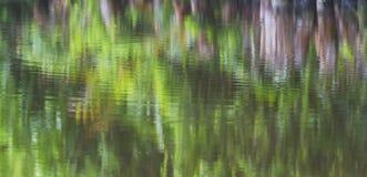 Reflexión de la vegetación de la orilla del río en el agua Foto de archivo libre de regalías