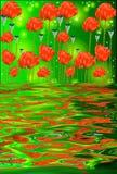 Reflexión de las flores de la amapola en agua Fotografía de archivo