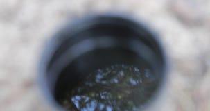 Reflexión de las ramas de árbol en el agua que comienza a hervir almacen de video