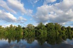 Reflexión de los árboles del río de Sena en el agua Imagen de archivo libre de regalías