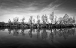 Reflexión de los árboles en el río Imagen de archivo libre de regalías