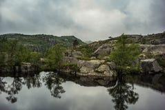 Reflexión de los árboles en el watter, Noruega Foto de archivo