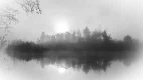 Reflexión de niebla del árbol del lago Foto de archivo libre de regalías