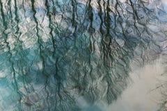 Reflexión de ramas en el agua Abstracción foto de archivo libre de regalías
