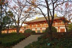 Reflexión de Tang Paradise Center en la noche, XI `, China imagen de archivo libre de regalías