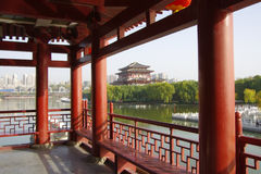 Reflexión de Tang Paradise Center en la noche, XI `, China fotos de archivo libres de regalías