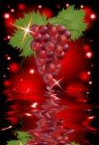 Reflexión de un manojo de uvas en agua Imagen de archivo libre de regalías