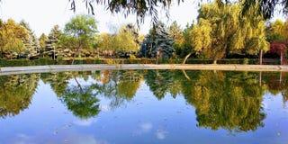 Reflexión del árbol en un lago imágenes de archivo libres de regalías