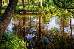 Reflexión del agua Foto de archivo