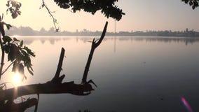 Reflexión del agua de Sun, pájaros que vuelan y reflexión del agua, efectos de la noche metrajes
