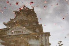 Reflexión del castillo japonés Imagen de archivo