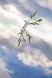 Reflexión del cielo azul en el río Fotos de archivo libres de regalías
