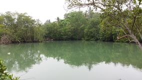 Reflexión del cuerpo del agua del ubin de Singapur Fotos de archivo libres de regalías