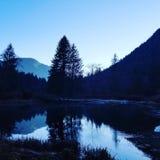 Reflexión del invierno en el lago fotografía de archivo libre de regalías