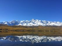 Reflexión del lago del espejo de las montañas Paisaje asombroso de la montaña Montañas de Altai Estepa de Kurai Lago Dzhangyskol imagen de archivo libre de regalías
