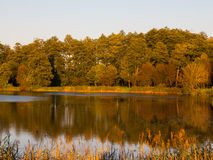 Reflexión del lago evening fotos de archivo libres de regalías