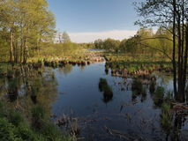Reflexión del lago (KlaipÄ-DA condado, Lituania) Foto de archivo
