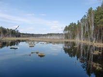 Reflexión del lago (Lituania) Fotografía de archivo